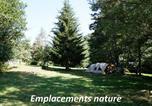 Camping avec Site nature Champagnac-le-Vieux - Flower Camping La Rochelambert-3