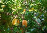 Location vacances Puerto Viejo - Starfruit House-3