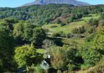 Location vacances Dolwyddelan - Dolmurgoch Snowdonia Cottage-2