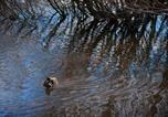Location vacances Daylesford - Still Waters Villa-4