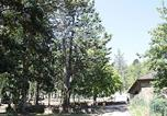 Camping Villefranche-de-Panat - Domaine L'Ecrin Vert-4