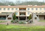 Hôtel Ladrillar - Hotel Balneario Valle del Jerte-1
