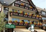 Hôtel Winterberg - Central-Hotel-1