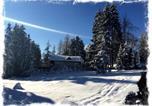 Hôtel Seefeld-en-Tyrol - Hotel Sonnen Alp garni-4