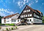 Hôtel Freudenstadt - Hotel Hirsch-1