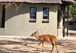 Camping Afrique du Sud - Senate Bushcamp Kruger-2
