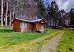 Location vacances Osorno - Acogedora Cabaña Cerca del Lago Ranco &quote;Pino&quote;-2