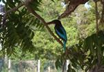 Location vacances Kataragama - Shangri-Lanka Village-4
