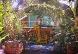 Hôtel Costa Rica - Madre Selva Hostel-3