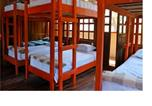 Hôtel Tamarindo - Coral Reef Surf Hostel and Camp-1