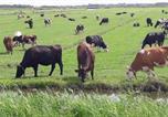Location vacances Zeevang - Noord-Hollands Hof Dream-2