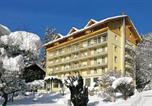 Hôtel Les chutes du Trümmelbach  - Hotel Wengener Hof-3