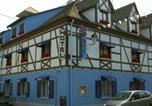 Hôtel Haut-Rhin - Hôtel Restaurant Aux Deux Roses-1