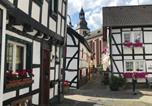 Location vacances Heimbach - Ferienapartment: An Der Kunstakademie Heimbach-2