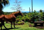 Location vacances Hilo - Hilltop Legacy Vacation Rental-2