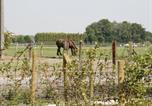 Location vacances Koekelare - Ter Hoge Zee-4