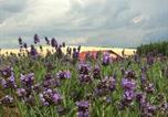 Location vacances Legénd - Lavender Szirák-4