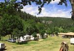 Camping Viaduc de Garabit - Camping Le Vieux Moulin-1