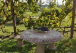 Location vacances Quattordio - La Crota-3