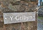 Location vacances Dolgellau - Y Gribyn-3