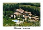 Location vacances San Giovanni d'Asso - Holiday home Buonconvento Iii-3