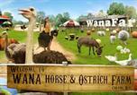 Villages vacances Pa Sang - Wana Horse and Ostrich Farm-3
