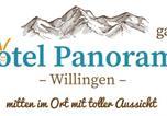 Hôtel Willingen - Hotel Panorama-1