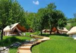 Camping avec Hébergements insolites Slovénie - Château Ramsak-1