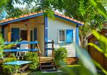 Camping 4 étoiles Villes-sur-Auzon - Les Fontaines