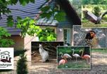 Villages vacances Réseau des moulins de Kinderdijk-Elshout - Vakantiepark Zevenbergen-3