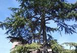 Location vacances Torgiano - Venturello-1
