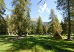 Camping Trentin-Haut-Adige - Fiemme Village-2