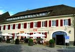 Hôtel Bad Krozingen - Ox Hotel-1