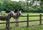 Location vacances Wittersham - Holiday Home Balmoral-2