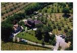Location vacances Scarlino - Casa Leonora-1