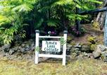 Location vacances Volcano - 'Ama'u Lani Cottage-2