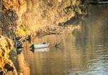Villages vacances Adelaide - Aruma River Resort-3