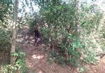 Camping Kataragama - Greenwood Wild Camping-3