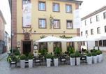 Hôtel Karlstadt - Land-gut Hotel zum Löwen Garni-1