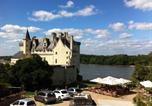 Hôtel Chouzé-sur-Loire - Hotel Le Bussy-2