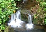 Location vacances Hilo - Hale Ki'i Maka Manu home-3