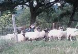 Location vacances  Aveyron - Le Mineur Paysan-4