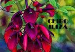 Hôtel Les Iles Baléares - Ceibo Ibiza - Guest House-1