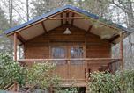 Camping avec Hébergements insolites Estavar - Camping Le Montagnou-3