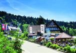 Hôtel Achern - Hotel-Berggasthof Schwarzwaldperle-1
