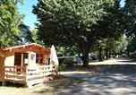 Camping avec Piscine Les Cammazes - Camping de la Lauze-1