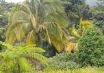 Hôtel Marigot - Vena's Paradise Hotel-2