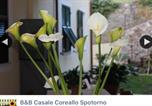 Hôtel Spotorno - B&B Casale Coreallo-3
