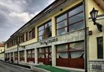 Hôtel Nyíregyháza - Toldi Fogadó-4