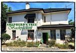 Hôtel Afrique du Sud - Shepherd's Tree Backpackers-1